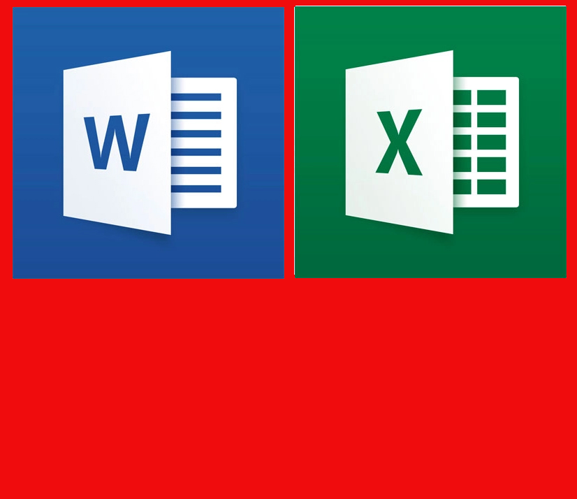 word excel